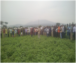 Farmers field day event organized in Boset-DryDev Ethiopia