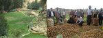Farmers harvesting potato produced using DryDev supported irrigation canal